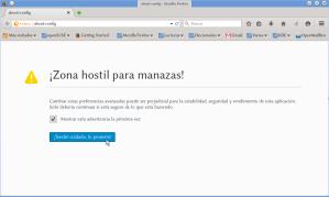 FirefoxReader-1